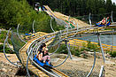 Alpine Coster